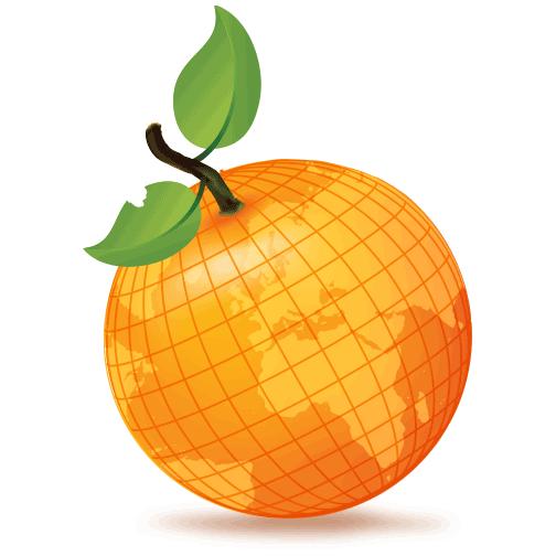 Nowadays Orange Training